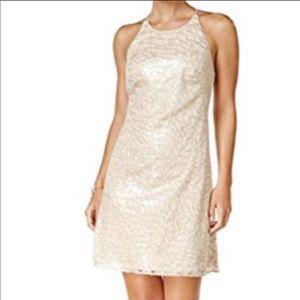 Vince Camuto Sparkle Dress